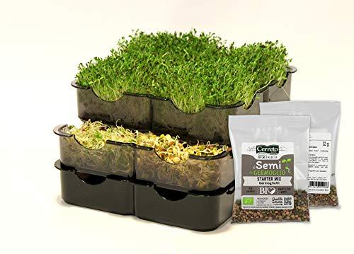GermoglioSì Smart Germinador para semillas manual innovador profesional multifunción patentado con 3 bandejas de plástico 100% reciclable con certificación Moca