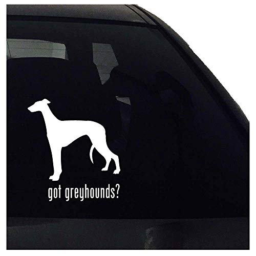 Heeft Dozili Chocolade Labs gekregen? Labrador Retriever Hond Decal Auto Raam Bumper Laptop Decal Vinyl Sticker Airedale Vinyl Decal 5