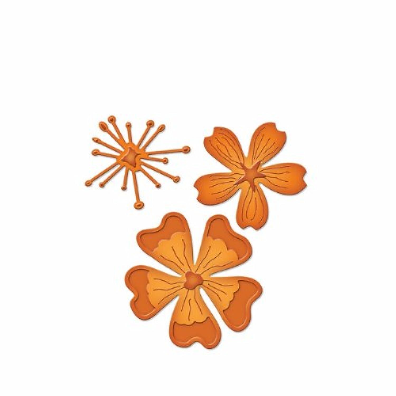 Spellbinders S2-046 Die D-Lites Blooms Three Etched/Wafer Thin Dies