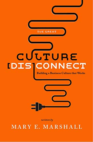 The Great Culture [Dis]Connect: Building a Business Culture That Works (English Edition)