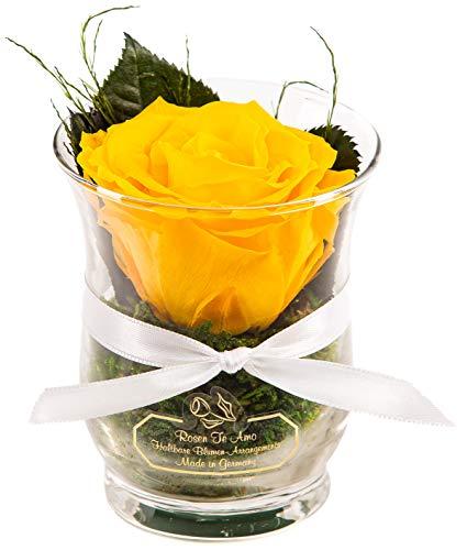 Rosen-Te-Amo Infinity Blume Blumen Gesteck - Haltbare Rosen-Box - Konserviertes Blumenarrangements (Hurricane Vase, Gelb - Standard)