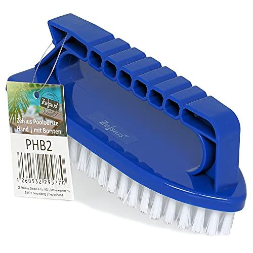 Zelsius Zwembad vloerborstel met handgreep, 15 x 6 x 6,5 cm, handborstel met borstelharen, reinigingsborstel…