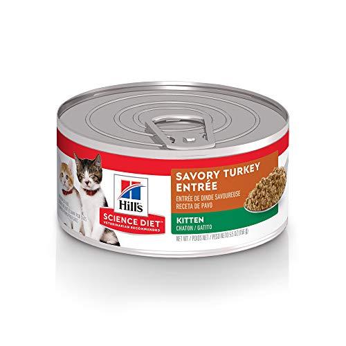 Hill s Science Diet Wet Cat Food, Kitten, Savory Turkey Entrée, 5.5 oz, 24-pack