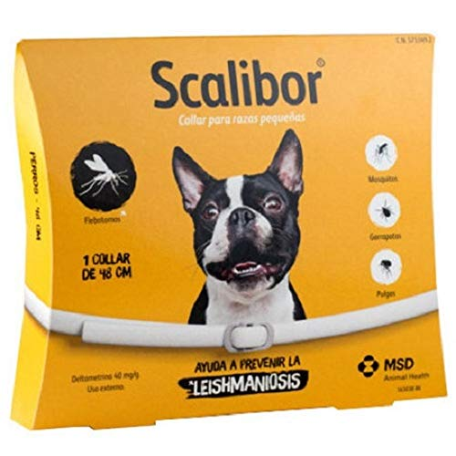 Intervet Scalibor Protector Bands for Dogs