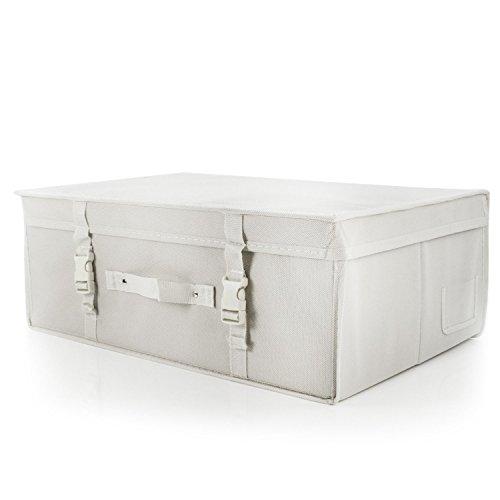 Hangerworld Caja de Ordenación 35x55x20cm Transpirable con Tapa Protege tu Traje de Novia...