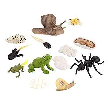 NC Kids Simulation Animal Figures Worker Ant Snail Frog Growth Process Playset