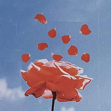 Flower Pedals (feat. Abi)