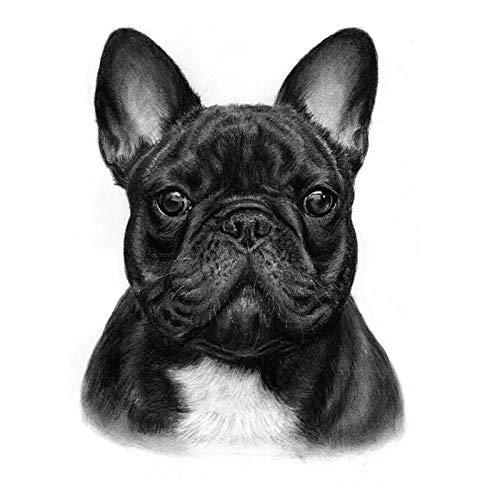 5D DIY Diamond Painting Kit Animal French Bulldog Crystal Rhinestone Embroidery Pictures Arts Paint by Number Kits Diamond Painting Kits for Home Wall Decor 30x40cm
