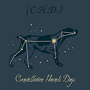C.H.D. Constellation Hounds Dogs