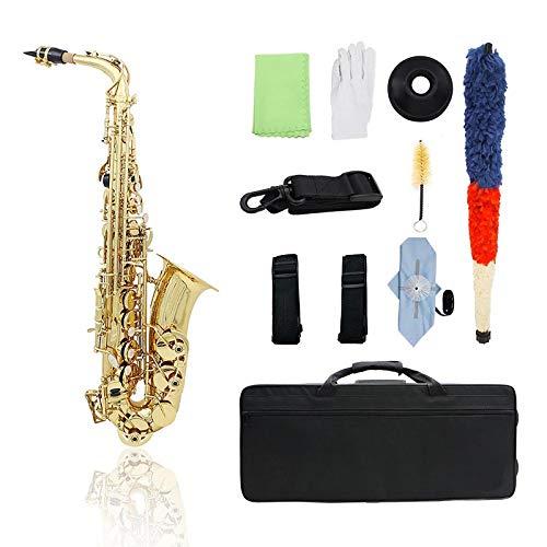 Queenser Bronze Eb Saxofone Alto Sax Lacado Instrumento de Sopro De Ouro de Ouro com Luvas de Estojo de Transporte Escova de Pano De Limpeza Escova Sax Mute Bocal Escova