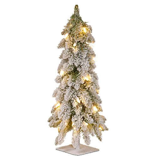 National Tree Company Pre-lit Artificial Mini Christmas Tree | Includes Pre-strung White Lights | Snowy Downswept Forestree - 2 ft
