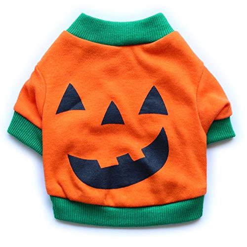 Haustierkleidung Baumwolle Wolle Orange Gelb Weihnachten und Halloween Kürbis Haustier T-Shirt