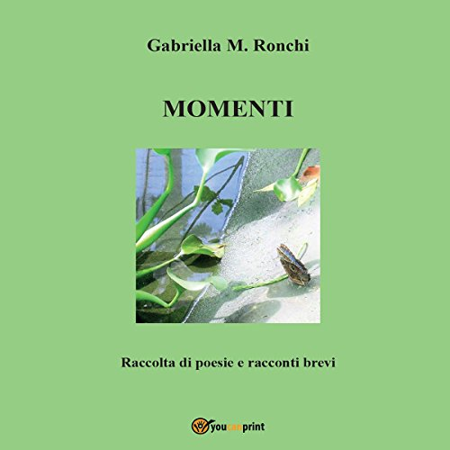 Momenti audiobook cover art