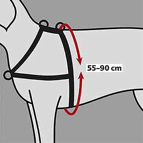 Trixie Lead'n'Walk Halsband für Kleintiere, Größe M-L