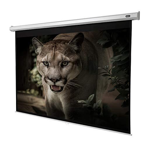 celexon manuell ausziehbare Heimkino- und Business-Beamer-Leinwand 4K und Full-HD Rollo-Leinwand Economy - 240x180cm - 118
