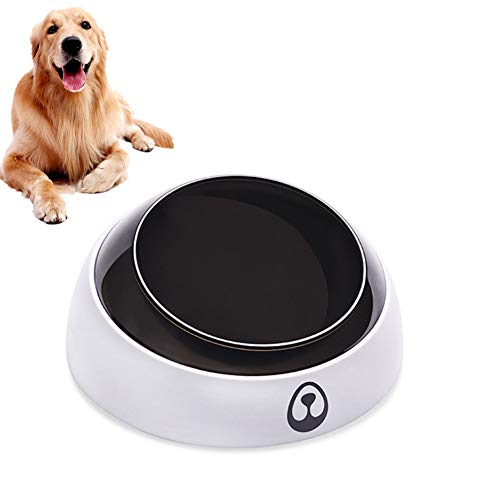 KANKOO Cat Bowls Tilted Cat Bowls Twin Dog Food And Water Bowl Non Slip Cat Bowl Dog Bowl Stainless Cats Dogs Drinking Bowl Shallow Cat Bowl Large Dog Bowl a