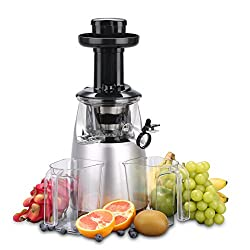 -Breko Slow Masticating Juicer