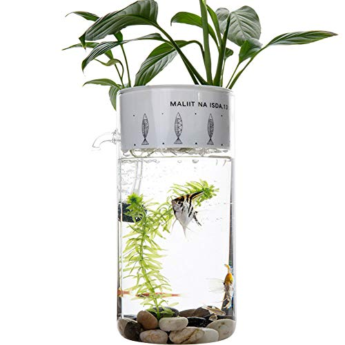 PLAFUETO Creative Glass Fish Tank Ecological Aquarium for Desk Office Table Living Room Bedroom Home Decor