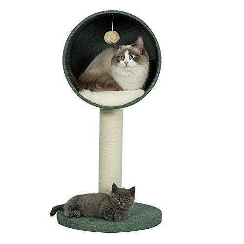 Cat Rasging Post, Cat Perse, Cat Tree Tower Activity Center, Cat Toycat Tower Tower Activity Center Sube Frame Cat Litter Cat Tree Cat Suplementos de PET PET Suministros Gato Jumping Plataforma SSISA