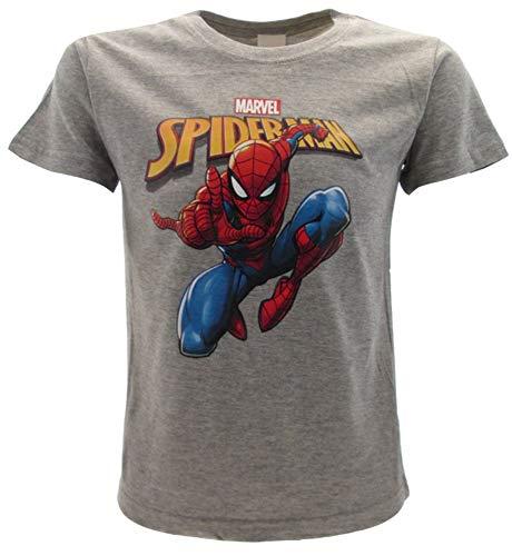 T-Shirt Spiderman Originale Spider-Man Uomo Ragno Grigia Marvel Ufficiale Maglia Maglietta (L Adulto)