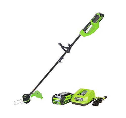 Greenworks 40V 14 inch Brushless Cordless String Trimmer, 2Ah Battery and Charger Included ST40L210