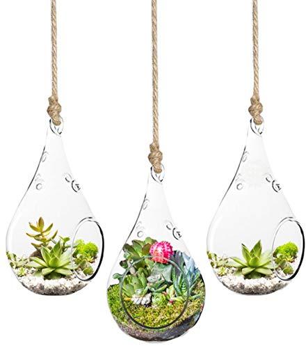 SunGrow 3-Piece Teardrop Hanging Terrarium, Mini Hanging Garden,...