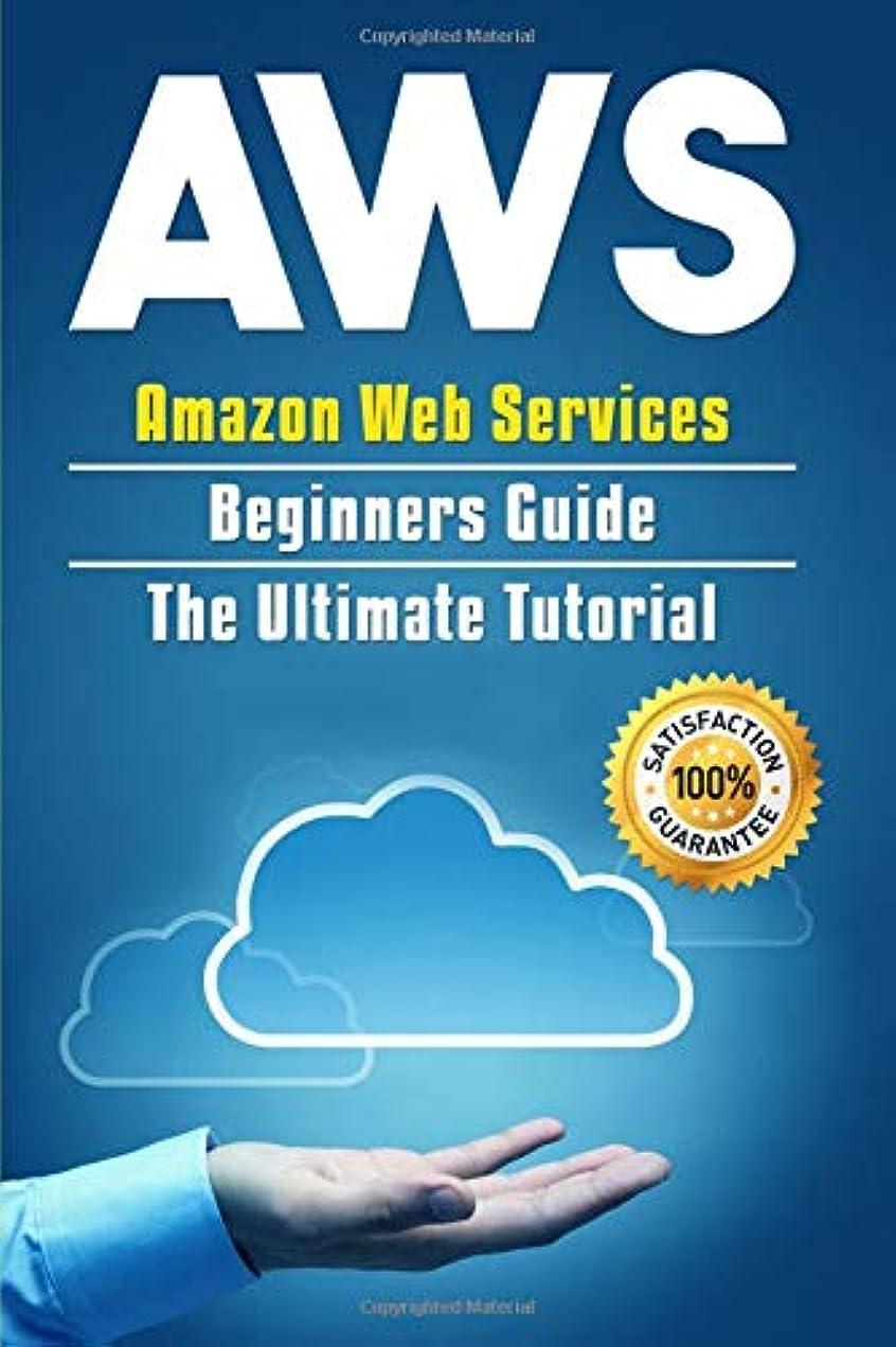規制手入れ合成AWS: Amazon Web Services Beginners Guide . The Ultimate  Tutorial (AWS Cloud)
