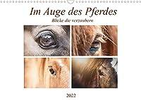 Im Auge des Pferdes (Wandkalender 2022 DIN A3 quer): Augenblicke des Pferdes (Monatskalender, 14 Seiten )