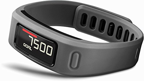 Lowest Prices! Garmin vívofit Fitness Band - Slate