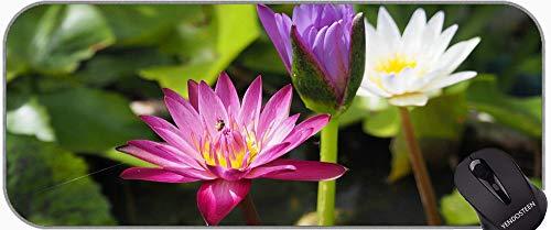 Lotus en el Agua Alfombrilla de ratón Divertido Personalizado, Loto Antideslizante Ordenador portátil Teclado Mousepad