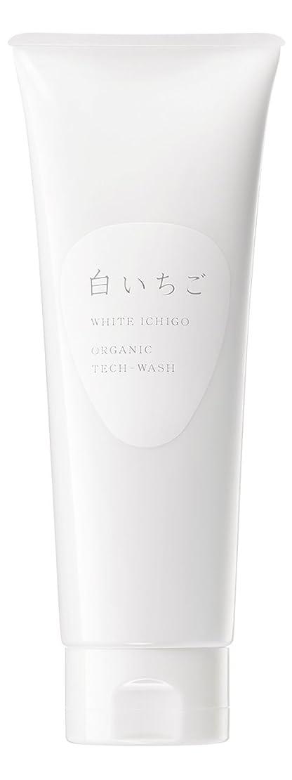 駅アナニバーお尻WHITE ICHIGO(ホワイトイチゴ) オーガニック テック-ウォッシュ 120g
