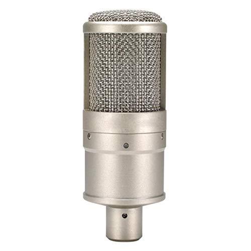GZQDX Micrófono de grabación de Estudio de dirección Lateral Micrófono de Condensador de actuación en el Escenario Transmisión de Karaoke para PC