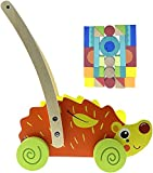 RB & G - Carrello per imparare a camminare, per bambini e neonati, giocattolo per la corsa e la motorizzazione a partire da 1 anno
