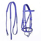 DER Custode di Cavalli Durevole Testa di Cavallo Collare Halter Equitazione Briglia-PVC di Alta qualità Corse di Cavalli Equestrian Attrezzature Accessori per Cavalli (Color : Blue)
