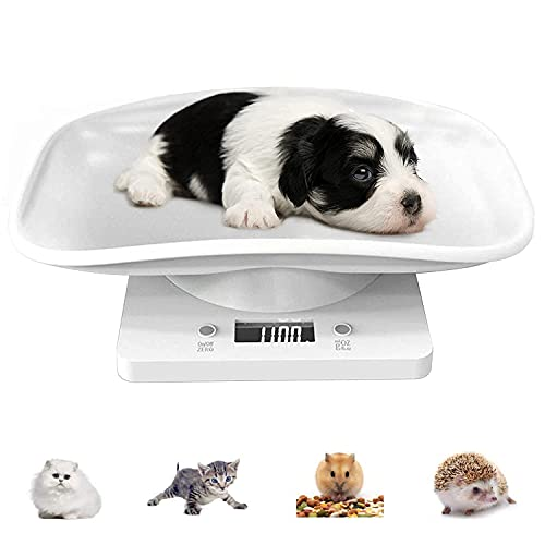 YTCYKJ Digital Pet Scale, Multi-Function LED Scale Digital Weight with Height Tray Measure Accurately, Perfect for Puppy/К itty/Hamster/Hedgehog/Food, Capacity up to 22 lb, Length 11inch