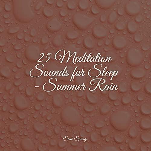 Rain for Deep Sleep, Classical Lullabies & Schlaflieder Relax