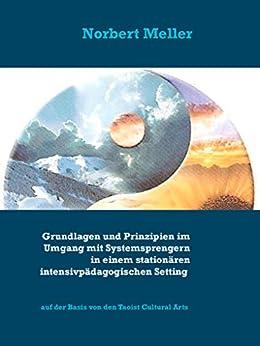 Grundlagen und Prinzipien im Umgang mit Systemsprengern in einem stationären intensivpädagogischen Setting: auf der Basis von den Taoist Cultural Arts von [Norbert Meller]
