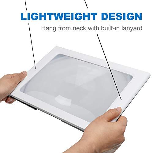 Fancii 2x große Leselupe mit LED Licht, A4 Vollbild Lupe für die Nutzung mit Handgriff, freihändig, mit Ständer oder Halsschlaufe – Lesehilfe für Senioren und zum Lesen, USB- und Batteriebetrieb - 6