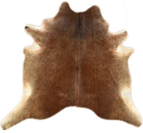 Peau de vache marron naturel env. Tapis en fourrure de vache Online 14170 210 x 200 cm