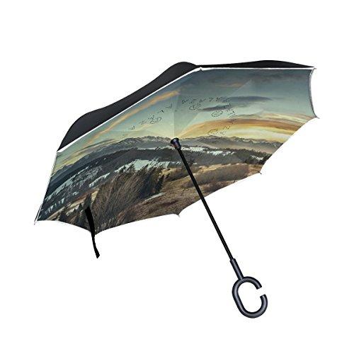 ISAOA un Paraguas Grande Puede Paraguas Resistente al Viento Doble Capa invertido...