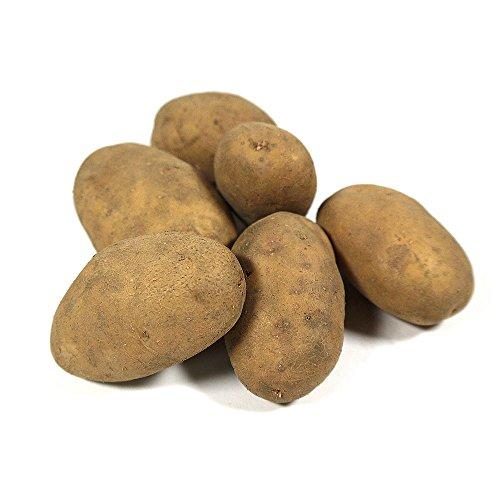 Obst & Gemüse Bio Kartoffeln festkochend (1 x 1000 gr)
