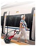 YF-Mirror Scooter de Movilidad de 3 Ruedas - Móvil Compacto de Alta Resistencia para Viajes, Adultos, Ancianos - Batería de Larga duración de Larga duración