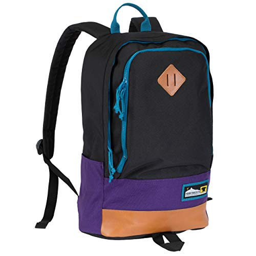 Mountainsmith Trippin Backpack (Purple Reign)