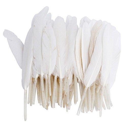 ZUMUii Butterme 50pcs Naturelles Plumes d'oie coloré pour Les Chapeaux, Maison, Mariage, fête décoration