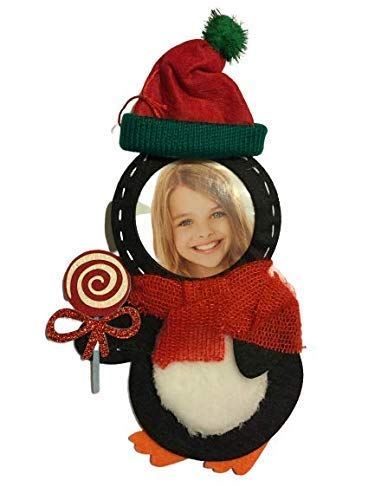 Video Recordable. Personalized Penguin Christmas Ornament with Picture and 1 Minute Video Recording. Save The Penguins! Green Technology. No Battery Required. Requires Use of ZIPPYAR Free App
