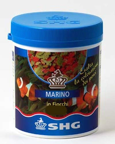 SHG Marino in fiocchi 150 gr