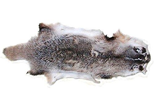 Ensuite kanadisches Dachsfell, ca. 65x30 cm, seidenweiches, dichtes Fell, Silberdachs, Präriedachs