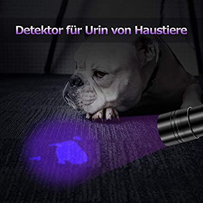 Puaida UV Black Light Torch 12 LED UV Lamp 395NM Urine Detector for Dried Stains of Your Dogs and Other Pets on Carpets, Curtains, Furniture Includes 6 x AAA Batteries 4