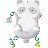 Fisher-Price Paws & Pose Panda Mat