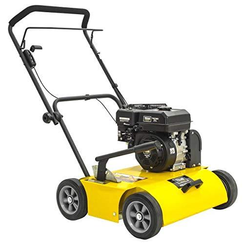 TEXAS ProCut 460TG Benzin Vertikutierer (46 cm Arbeitsbreite, 4200 Watt Leistung, 48 Messer)